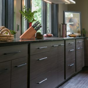 Contemporary Kitchen Cabinetry